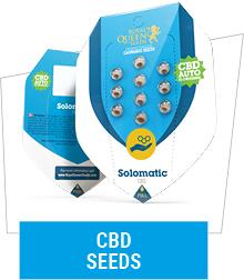 medical-cannabis-seeds
