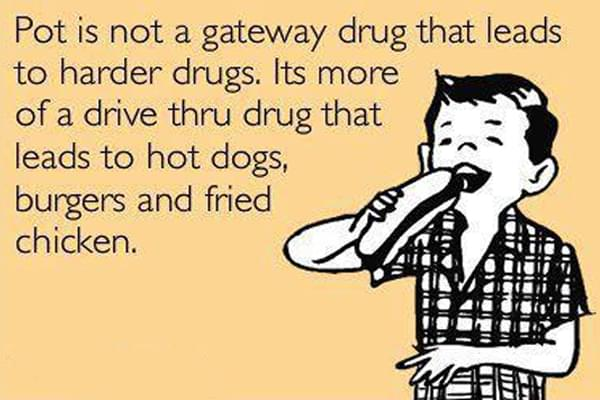 Cannabis is not a gateway drug