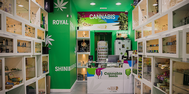 Cannabis Seeds Shop