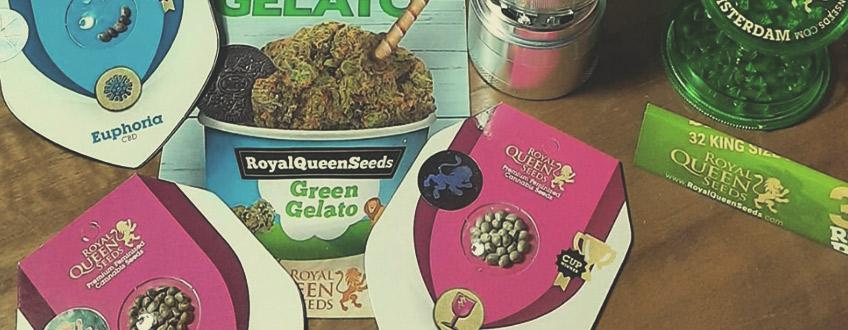 Darmowe nasiona marihuany oraz gadżety