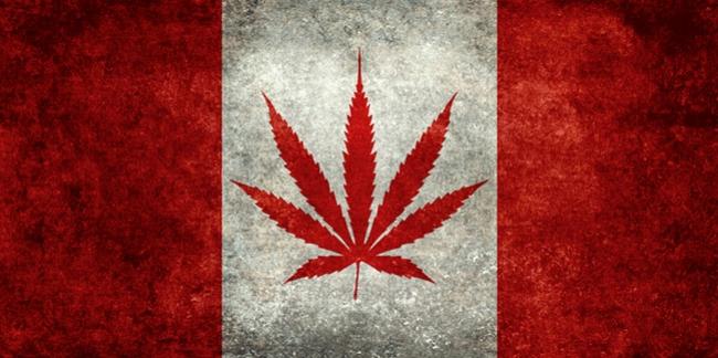 marihuana legalizacja Kanada kliniki medyczne